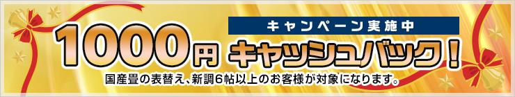 1000円キャッシュバックキャンペーン開催中